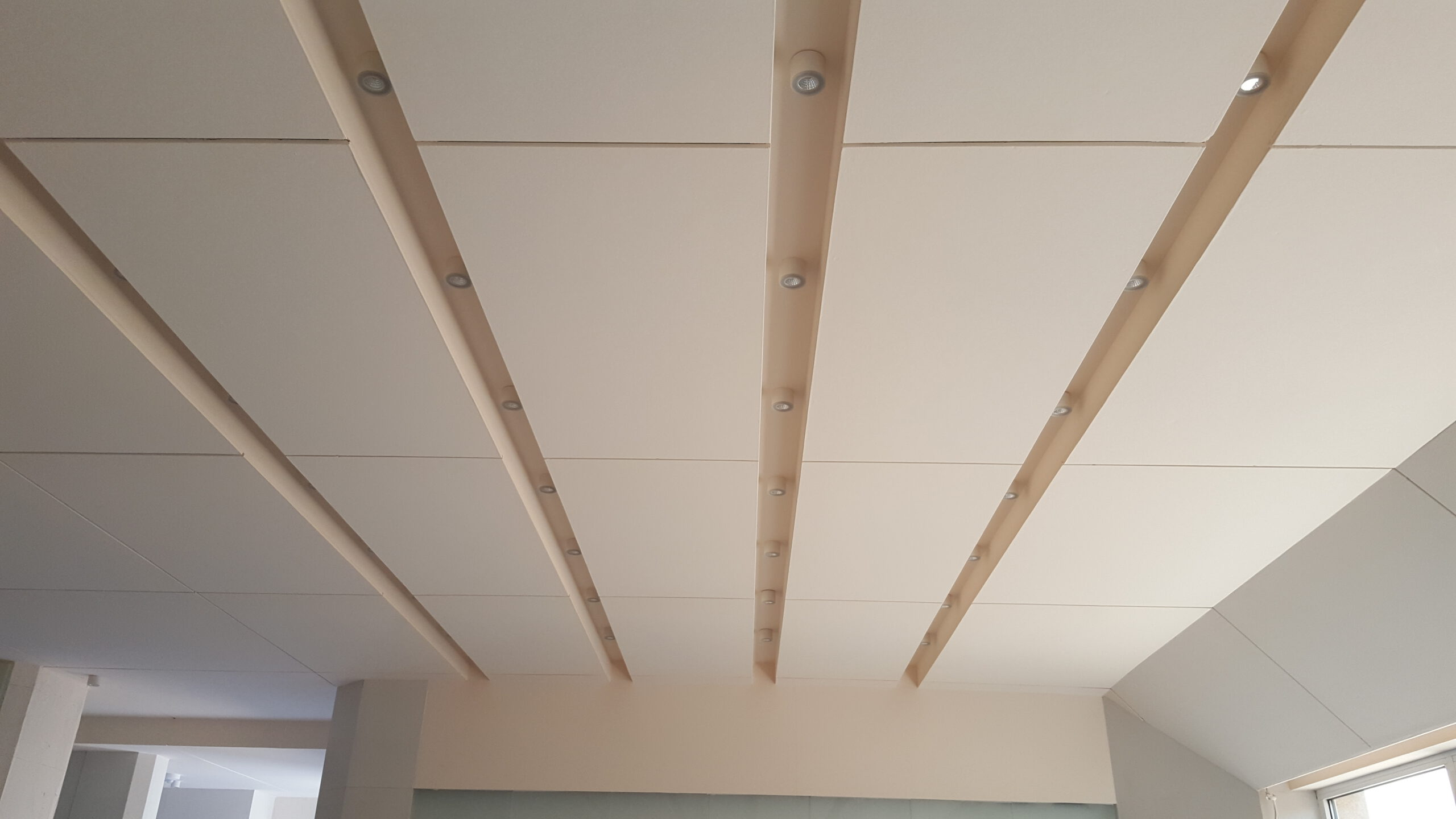 Buy Ceiling System