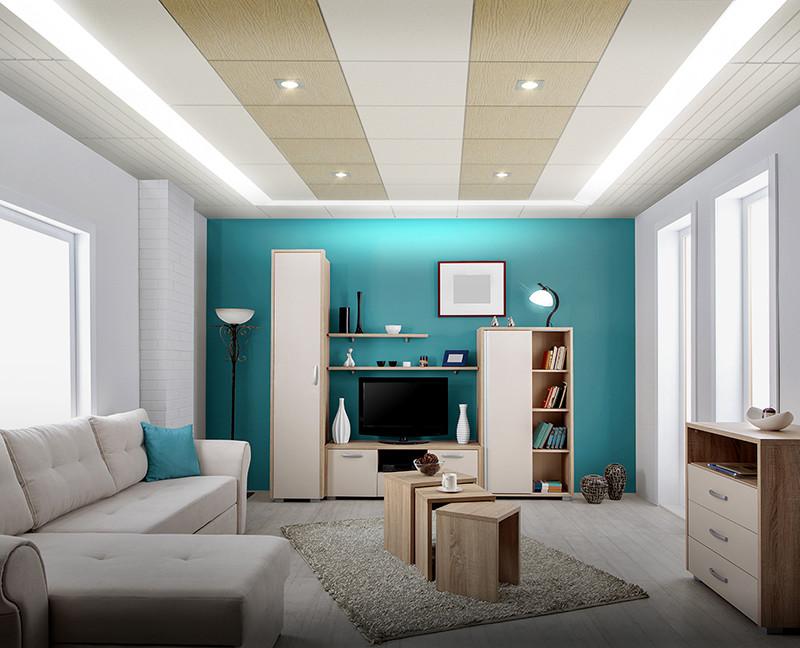 Internal Drywall SCG India