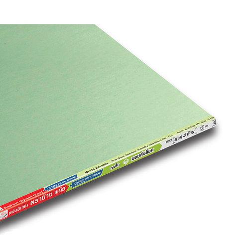 MoistBloc Board Plus Gypsum Board 3