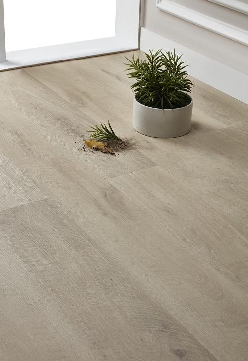 SPC Floor for living room