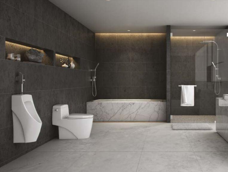 Cotto toilet design idea