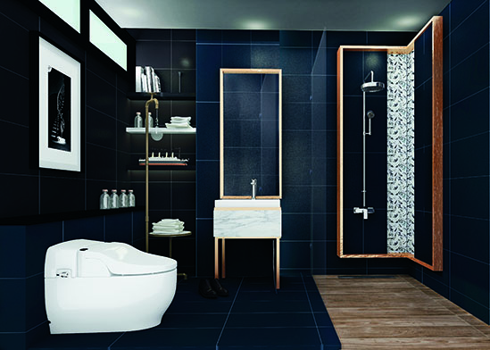 bathroom designs to match your house