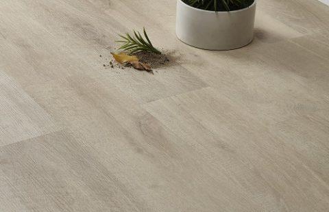Best quality SPC Floor for living room 1